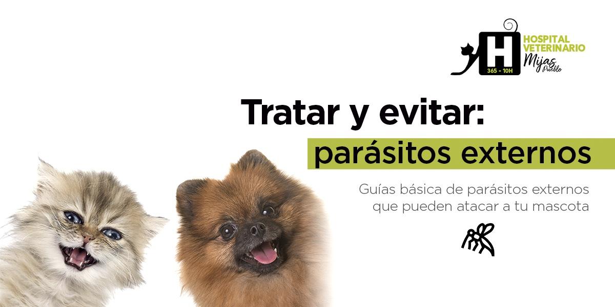 Guía práctica de parásitos externos.