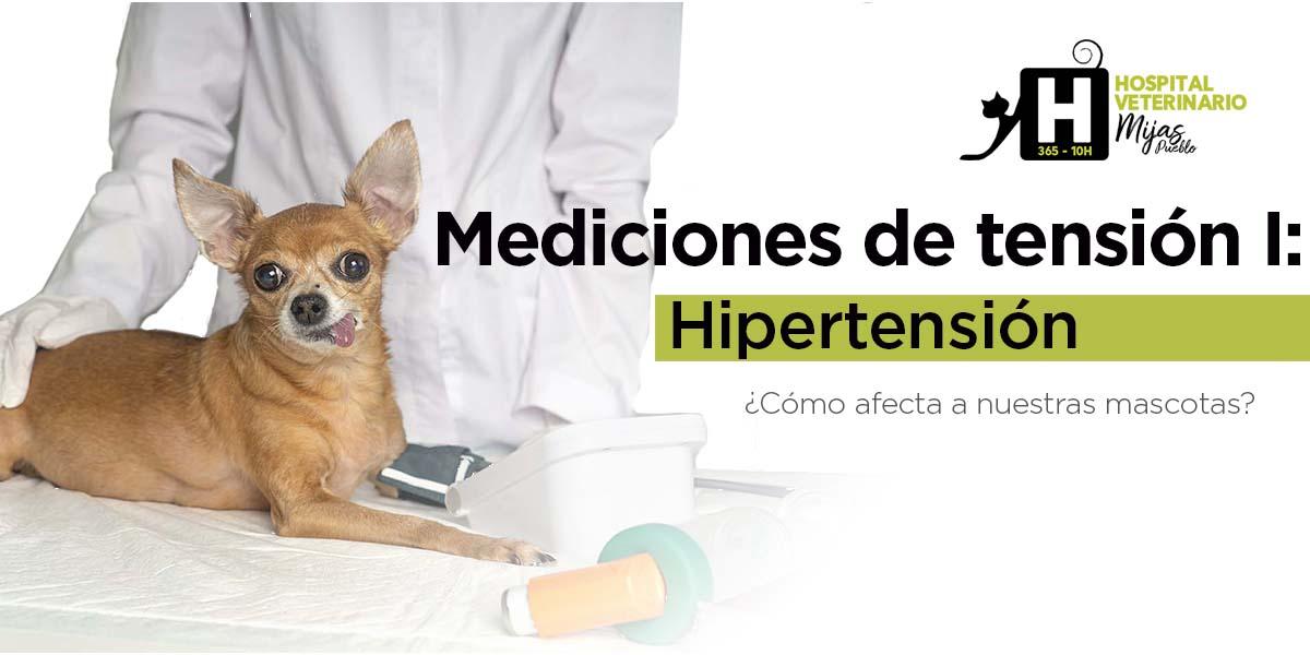 Mediciones de Tensión I: Hipertensión